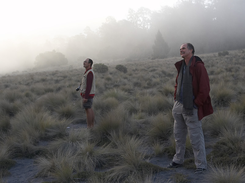 Me and Tom Pfeiffer (a volcanologist who who first showed me the volcanoes of Java) watching Semeru erupt.